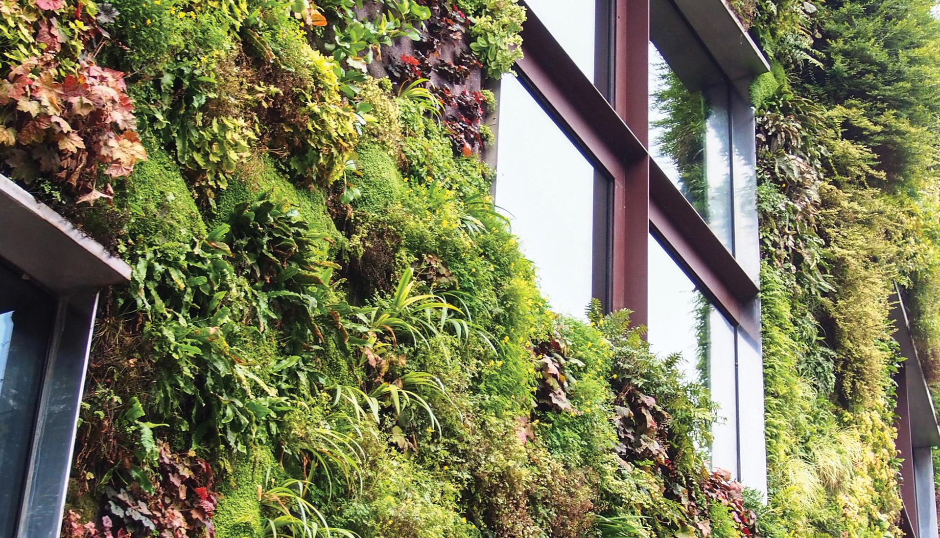 servizi_background_giardino-verticale